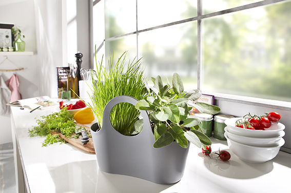 Scheurich Plantbag Kitchen